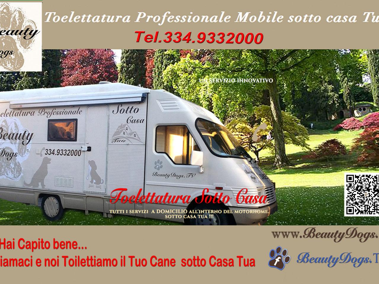 Vasca Da Toelettatura : Beauty dogs toelettatura professionale mobile sotto casa tua