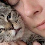 come rapportarsi con un gatto