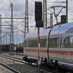 viaggiare con animali in treno