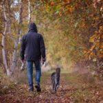 uscire con il cane durante il coronavirus