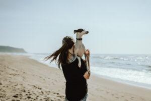 spiagge cani